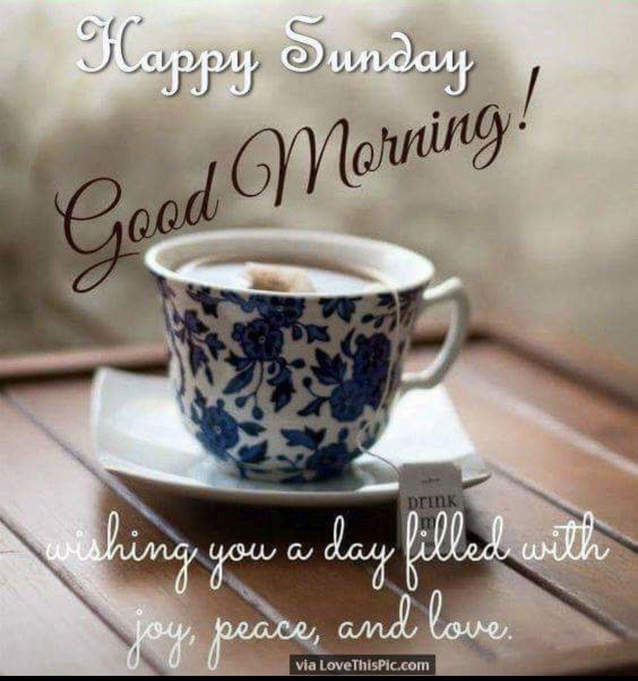 Pin By Simmi On Good Morning Good Morning Happy Sunday Good