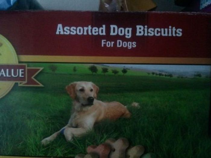 Assorted dog biscuits are for dogs.