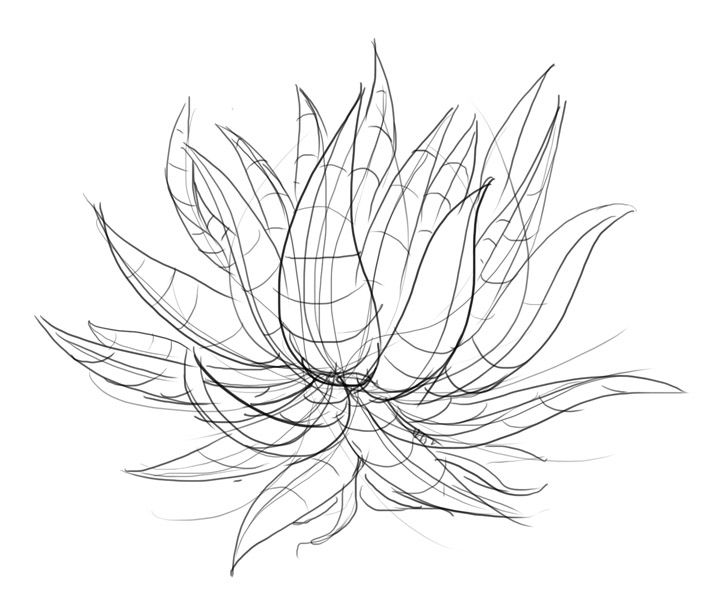 Lesson 3: Drawing Plants   Plant drawing, Vine drawing, Realistic drawings