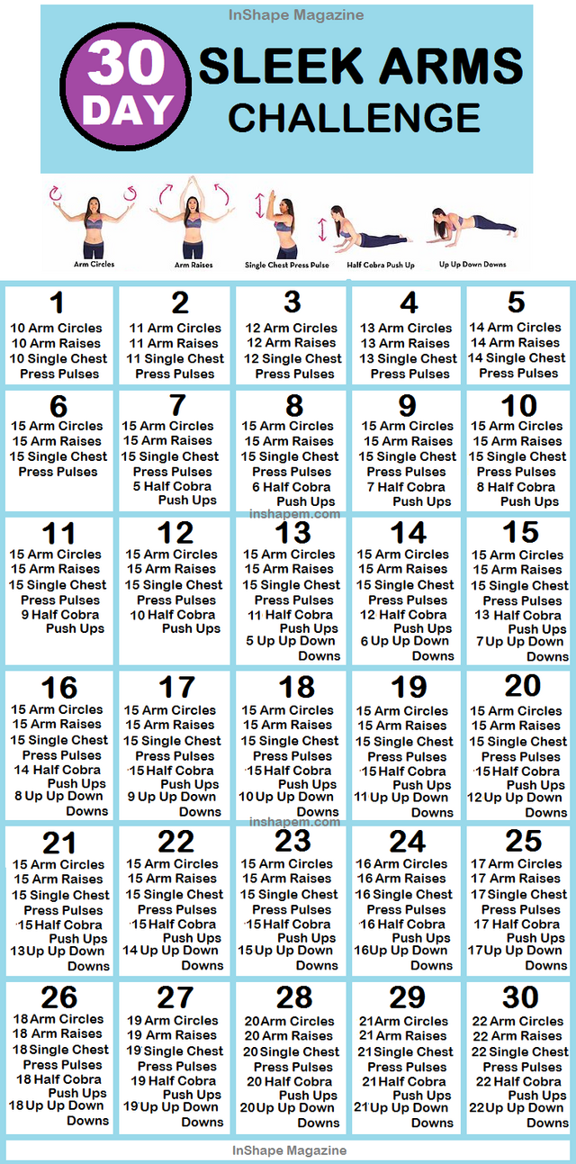 The 30 Day Sleek Arms Challenge (Posts by Melinda Garner)#arms #challenge #day #...