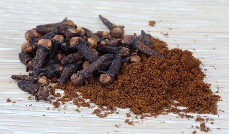 تجربتي مع القرنفل للشعر وأفضل الخلطات الطبيعية باستخدامه Cloves Spice Cloves Benefits Spices