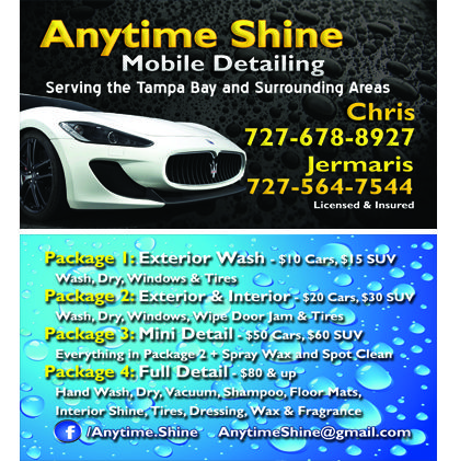 Anytime Shine Mobile Detailing Mobile Tampa Bay Door Jam