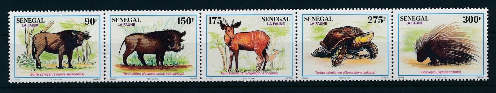 [25799] Senegal 1995 Wild Animals Buffalo Turtle MNH