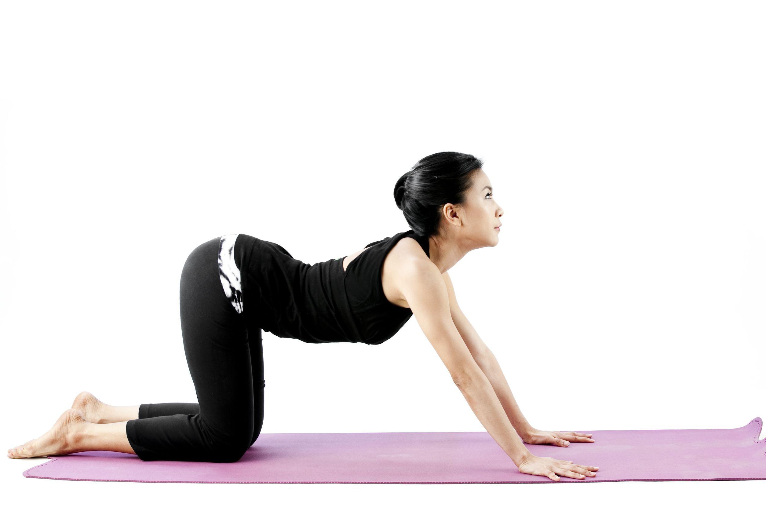 5 Yoga Poses You Can Do Every Morning Basic yoga, Yoga