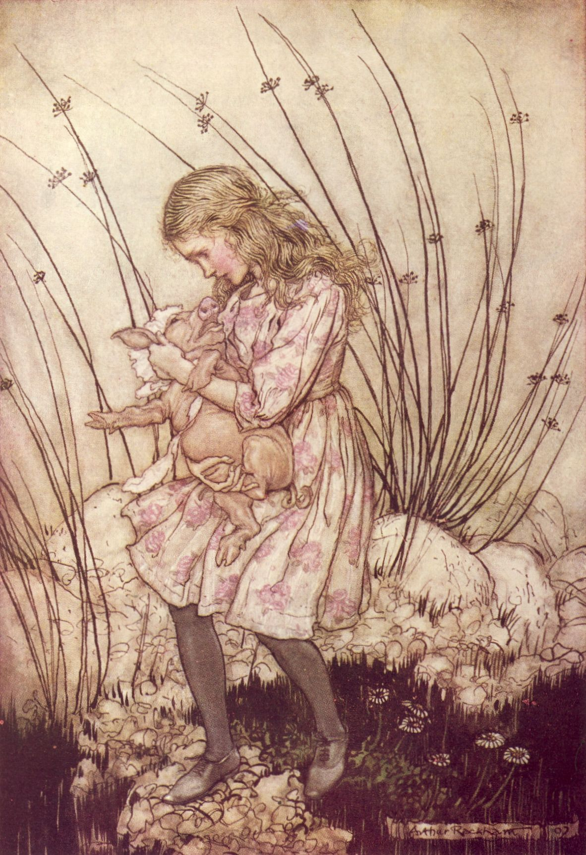 Alice\'s Adventures in Wonderland 1907 - 7.jpg (1182×1724) | Books ...