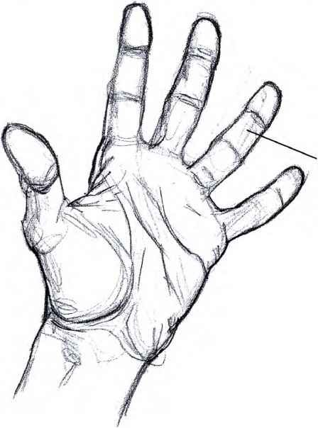How Draw Open Hand Step Step | How to draw hands, Step by step ...