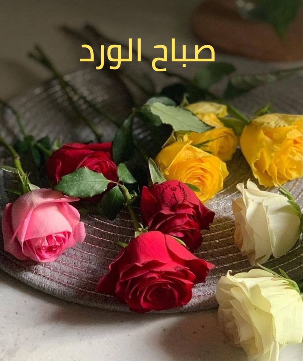 صباح الخير Good Morning Inspiration Good Morning Beautiful Good Morning Greetings