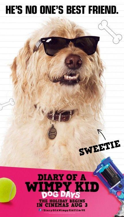 Wimpy Kid Dog Days Book