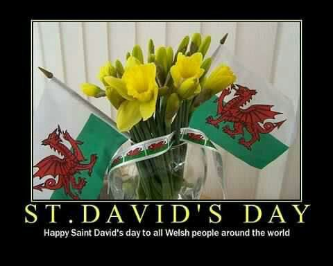 happy st david's day' in welsh - photo #35