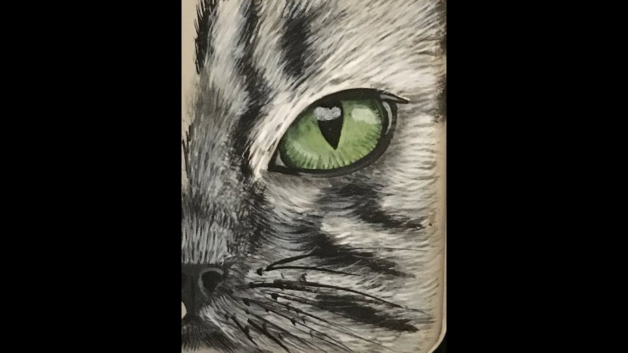 Paint Cat Eyes In Acrylic Youtube Eye Drawing Eye Painting Cat Eye Tattoos