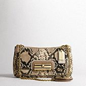 Super obsessed with my new bag - the faux-python is a neutral with interest, and the delicate chain can be worn short (securely under your arm) or long (hitting at the hip)