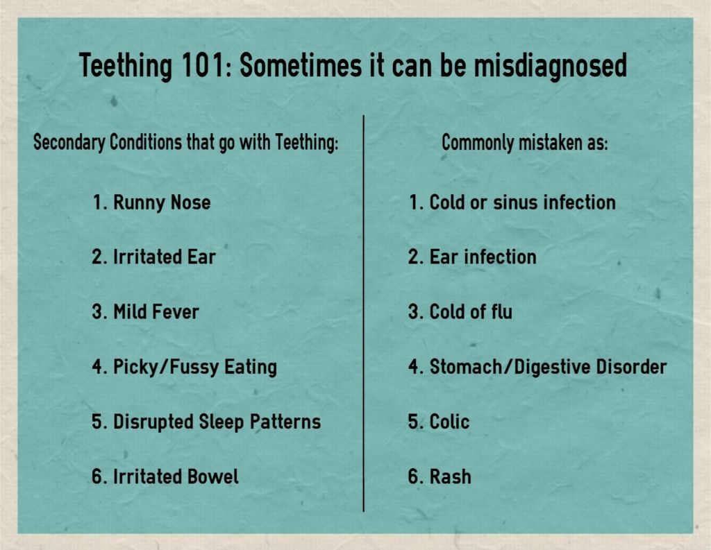 When Do Babies Molars Come In With Images Teething Signs Baby Teething Symptoms Baby Baby Teeth