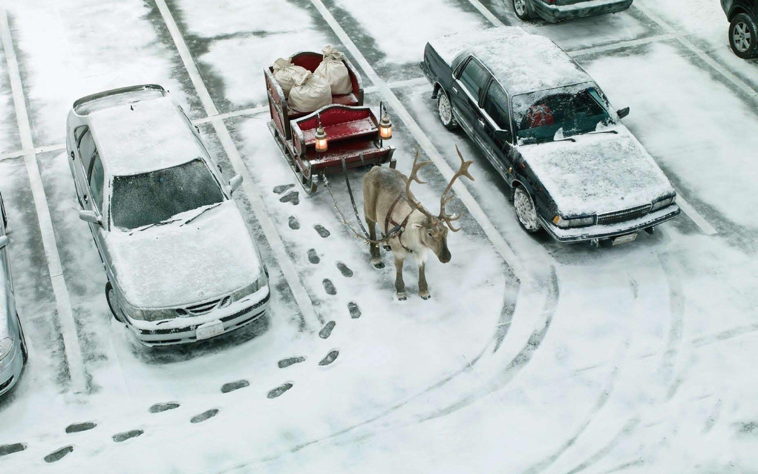 A Very Indie Christmas Playlist | Pinterest | Christmas playlist ...
