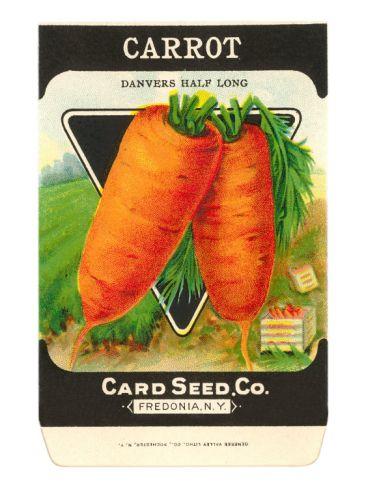 Carrot Seed Packet Premium Poster At Art Com Garden Seeds