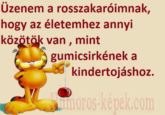 idézetek rosszakaróknak Google+ | Garfield wallpaper, Bones funny, Garfield