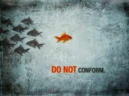 Ateu Racional e Livre Pensar: Não se acomode