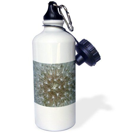 3dRose Dandelion Flower, Sports Water Bottle, 21oz, White