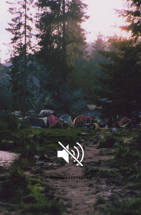 Silence... enjoy the experience of camping, turn off your cellphones & only use in case of an emergency.  The idea of a vacation is to get away from the hustle & bustle (and technology) of everyday life!  #camping