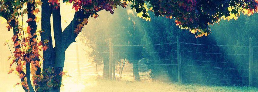 Facebook Tumblr Wallpaper Facebook Cover Photos Best Facebook Cover Photos