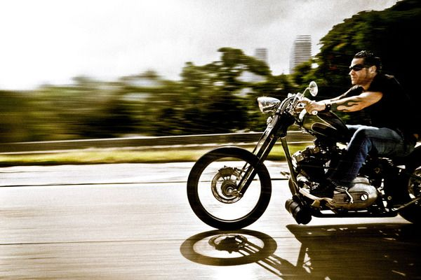 Born to be wild ... ride free.