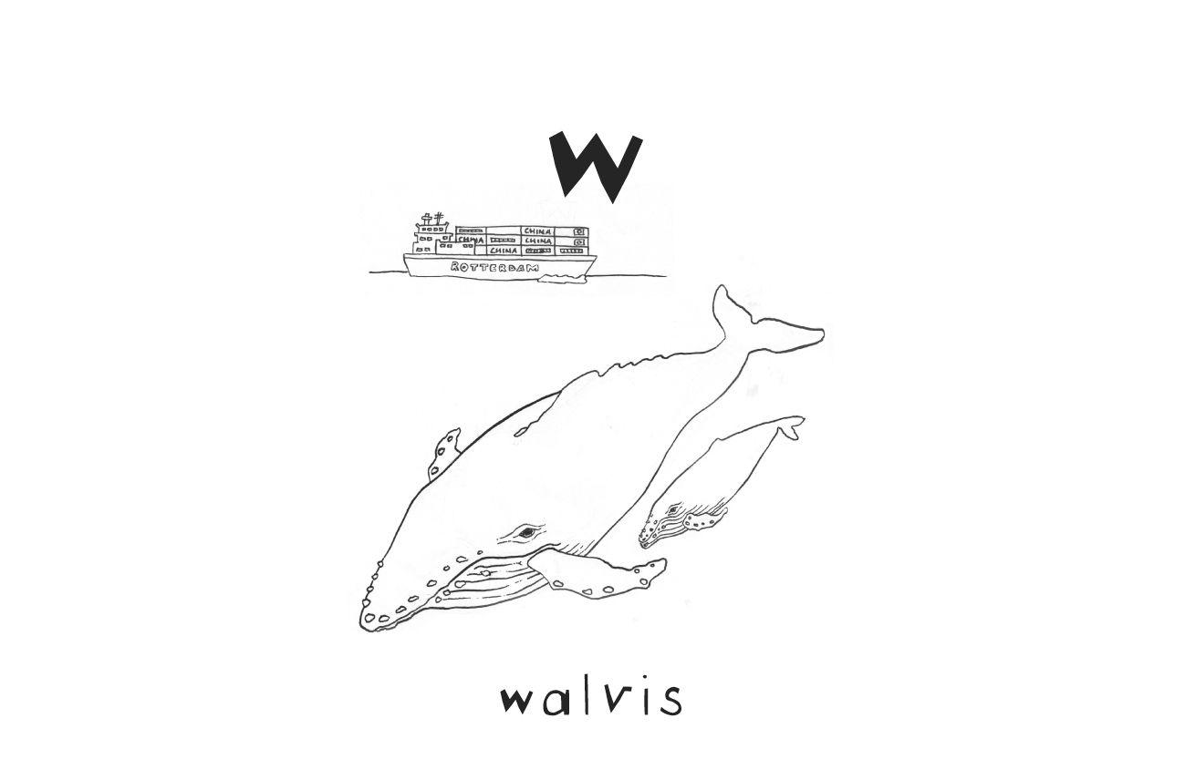 W Van Walvis Abckleurplaten Nl Walvis Lezen Geletterdheid