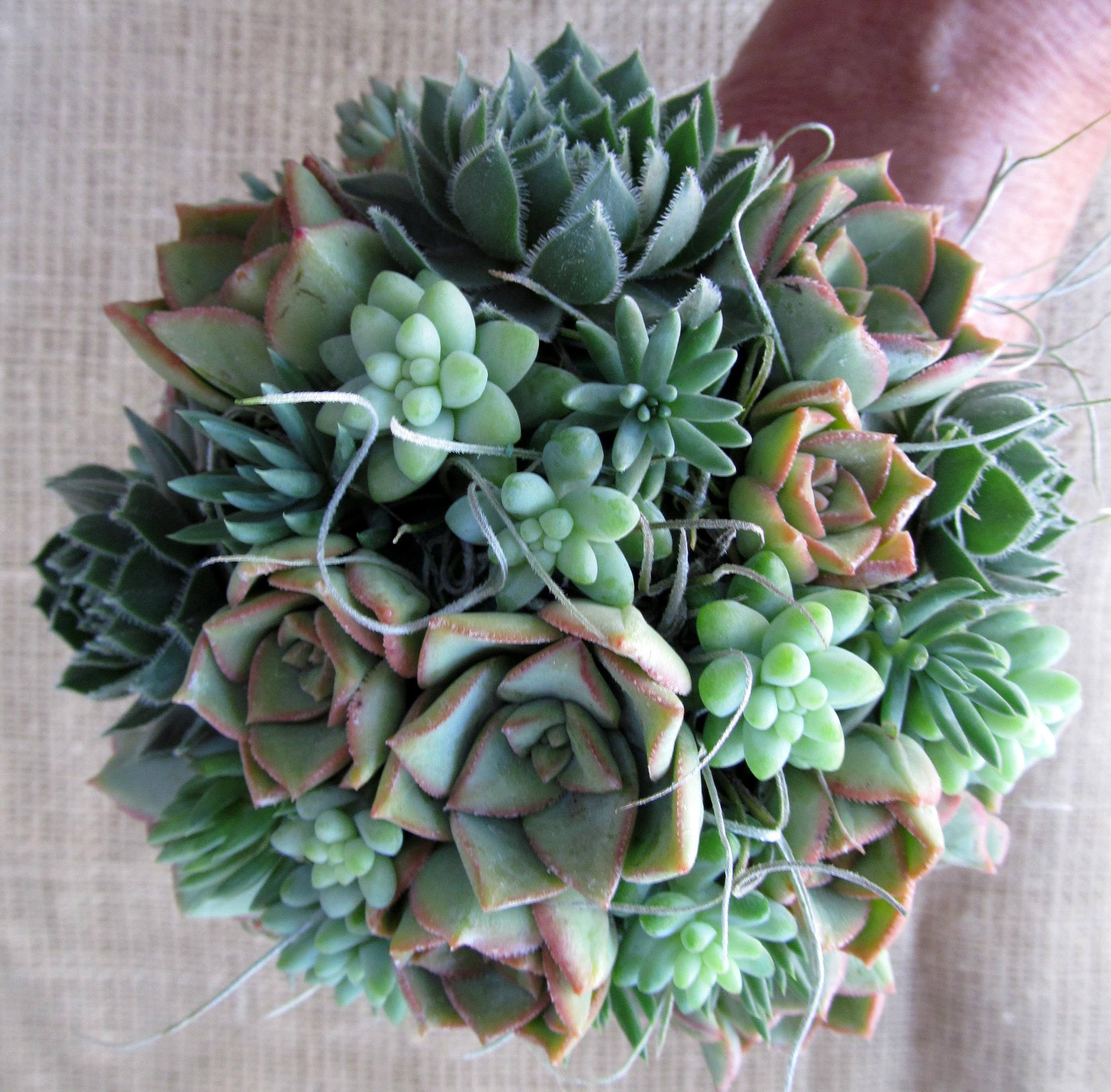 Blush Succulent Wedding Bouquet