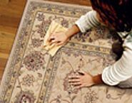 ThisOldHouse.com: Holiday Host Survival Guide - Despite your best efforts to prepare, you'll probably encounter a blip or two during your family gathering. -- Here's how to handle the unexpected, including: Wine Spills, Chair Repair, Stove Fires, Backed Up Plumbing and much more!