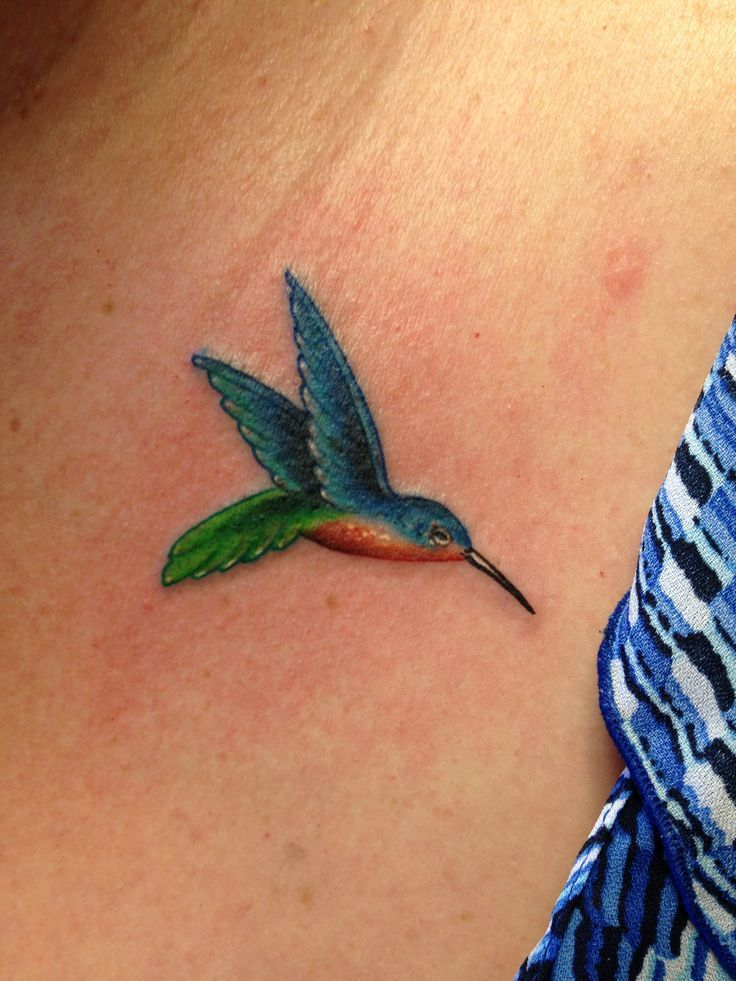 hummingbird tattoos Yahoo Image Search Results Small