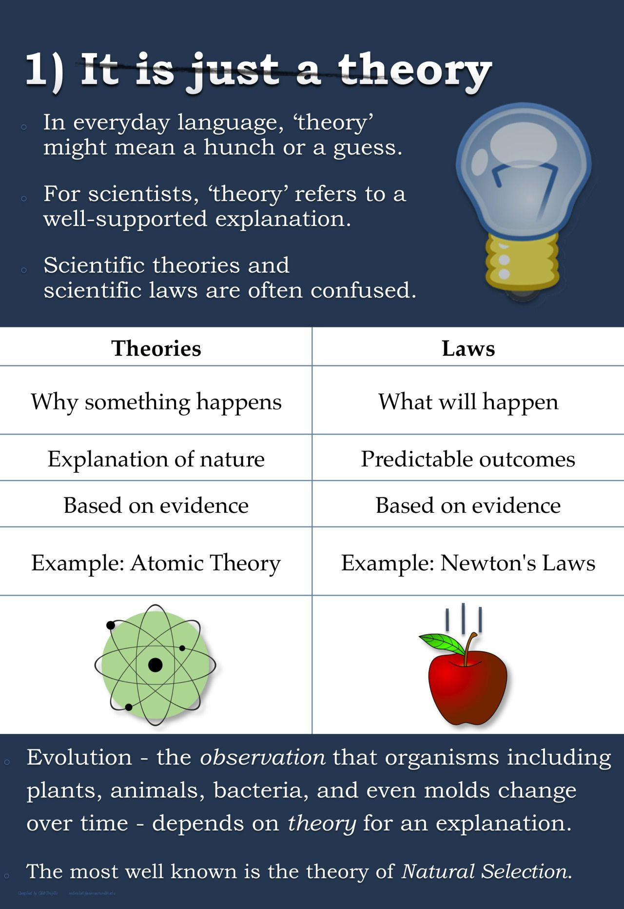 Top 5 Misconceptions About Evolution A Guide To Demystify The