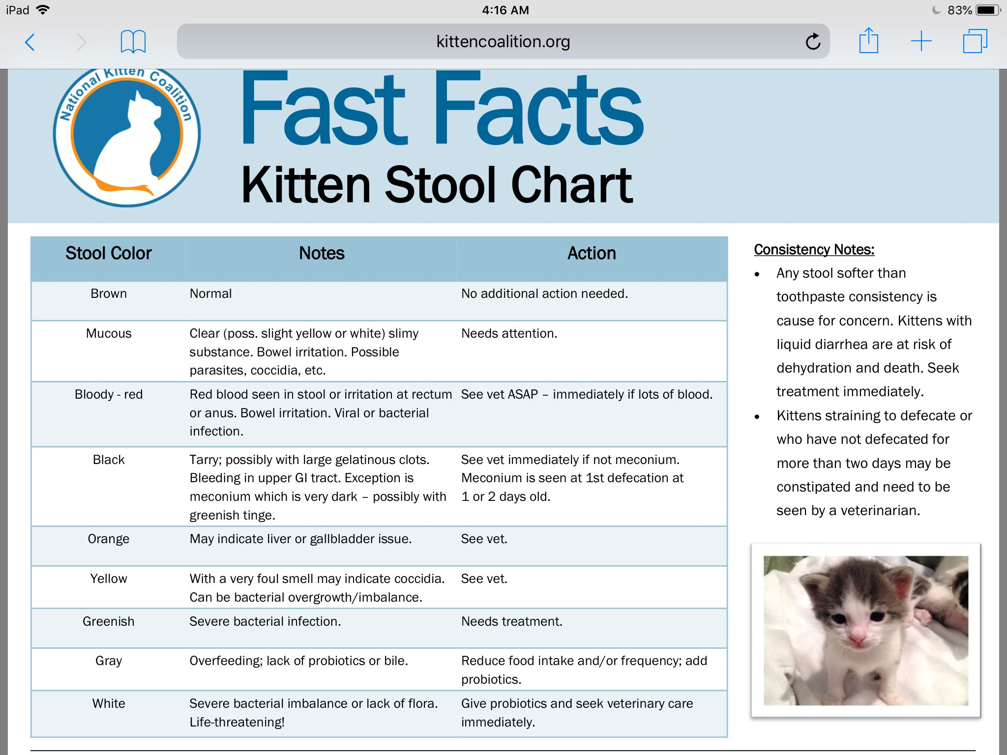 Pin By Annie Williams On Pets Stool Chart Fast Facts Childrens Rocking Chairs