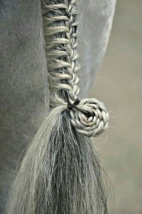 Más agudo peinados para caballos Galería de cortes de pelo estilo - Peinados | Crin de caballo, Aseo del caballo, Cola con trenza