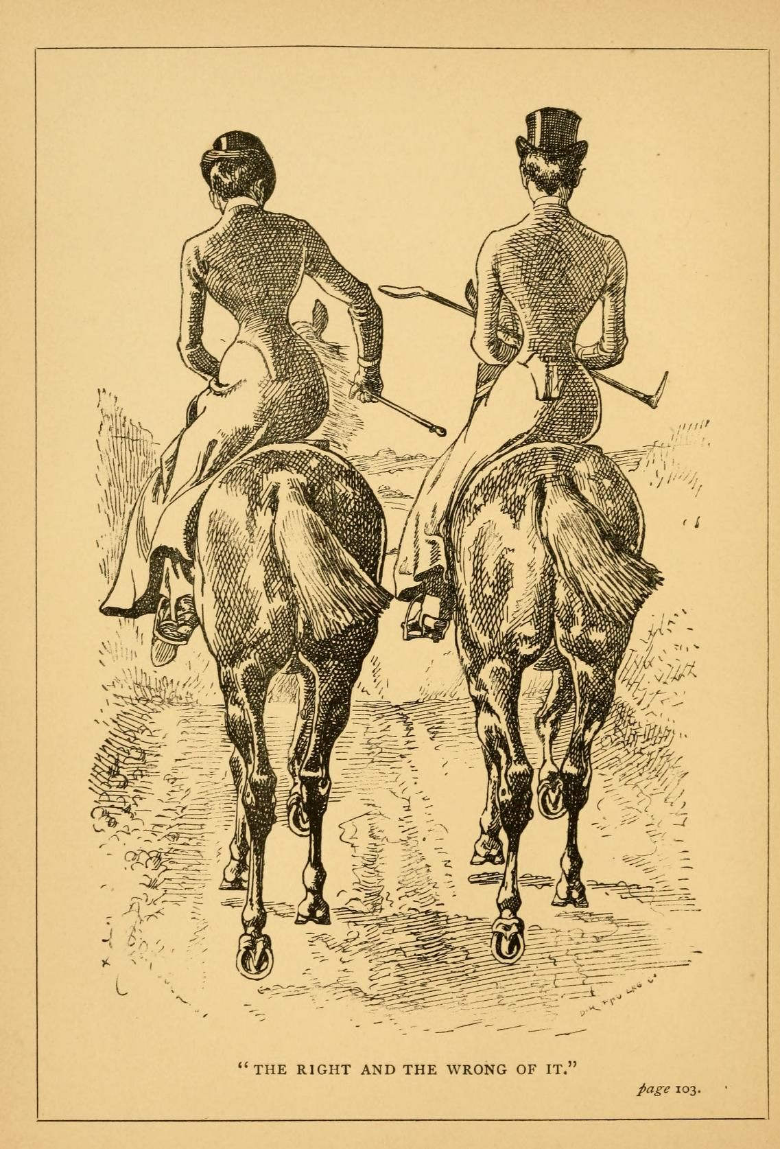 Riding for ladies : with hints on the stable illustration, pinned by #tegwarco