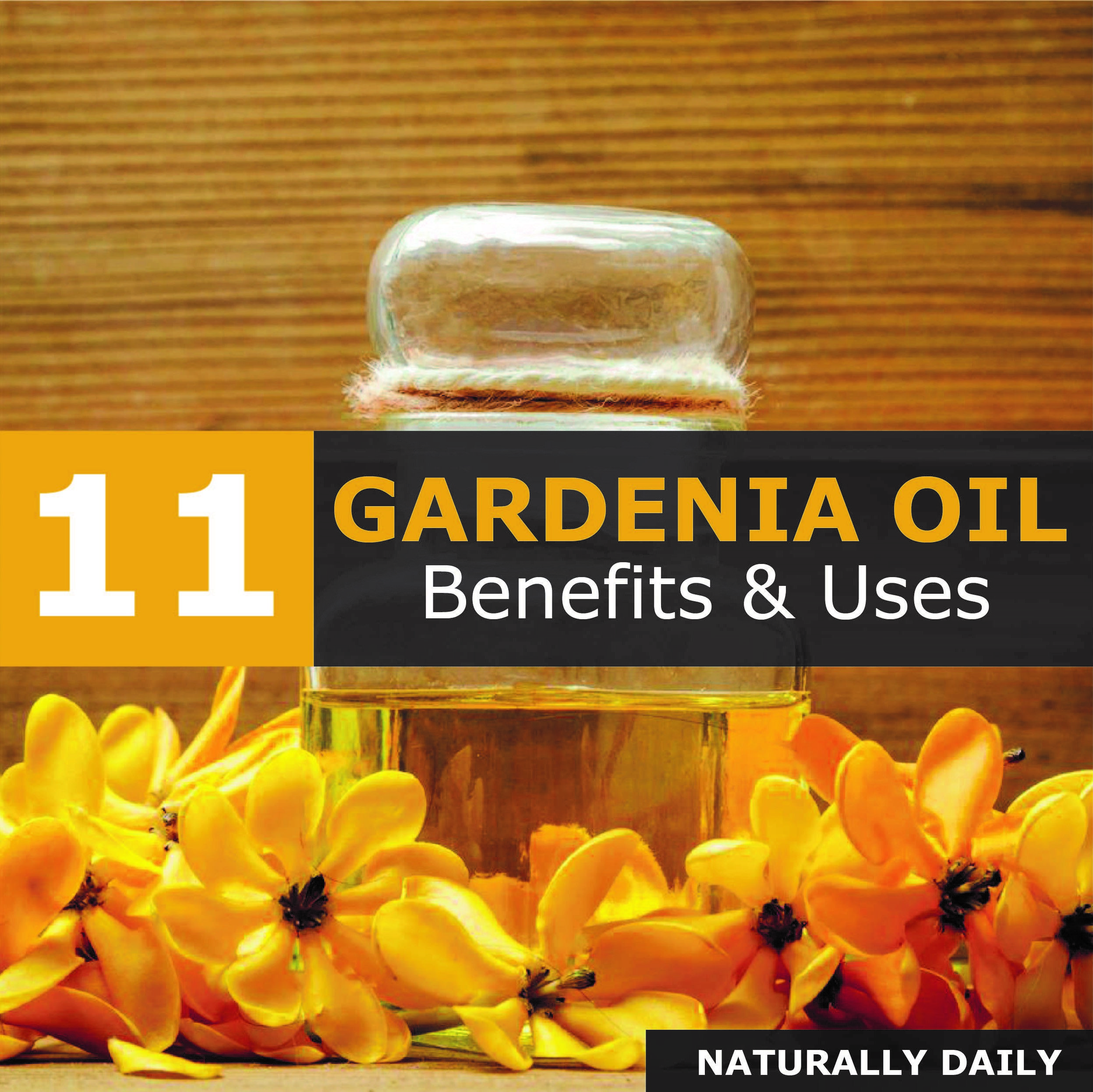 Gardenia Essential Oil 11 Surprising Benefits Uses Gardenia Essential Oil Gardenia Oil Benefits