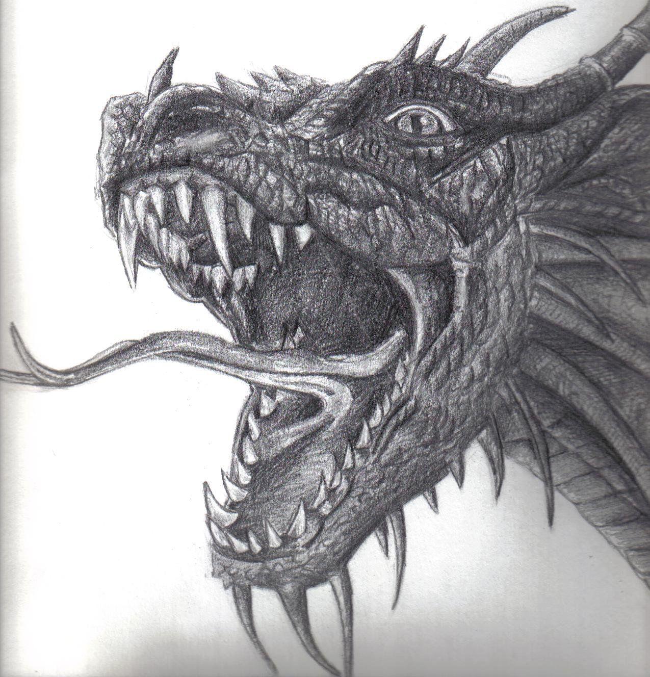 Photo of Dragon 2 von beautyeyes auf DeviantArt