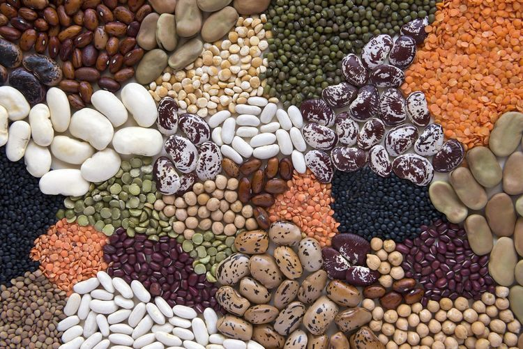 Why Beans And Legumes Are Great For A Low Carb Diet Beans Nutrition No Carb Diets Lentil Nutrition Facts