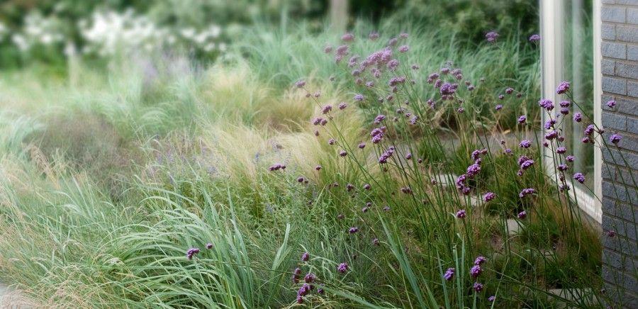 5 © AWB_Andrew van egmond_ontwerp van tuin en landschap_proj4
