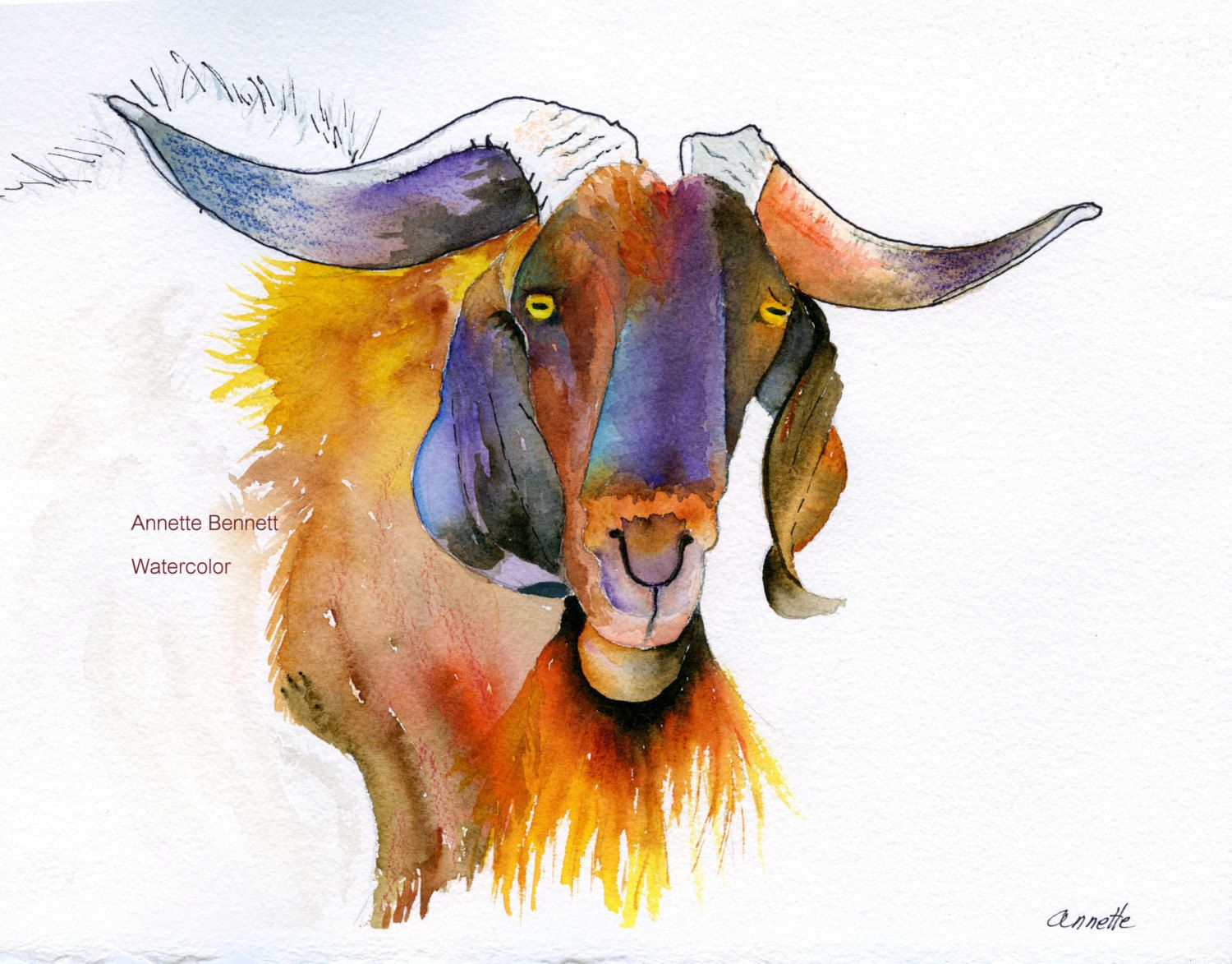 Original watercolor art for sale - Dexter Boer Billie Goat Contemporary Color And Personality Western Southwestern