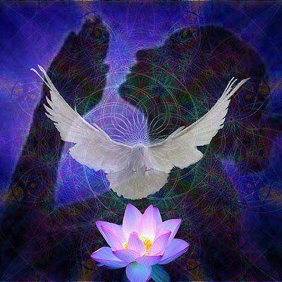 """Aclarando el canal de comunicación angelical  En cierta ocasión, una amiga me decía que sentía que su canal de comunicación personal con los ángeles estaba """"interferido"""" y que se confundía. Respecto a esto, le expliqué que la clave para distinguir los mensajes angelicales está en el efecto que producen, ya que siempre generan sensaciones de calidez en el corazón acompañadas de tranquilidad, alegrí...See More"""