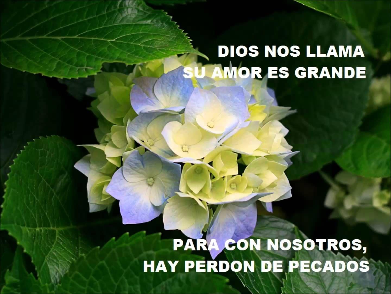 8 1 2 COR 13 2 14***hay solución........solo Jesús en tu corazón la respuesta para ir al cielo