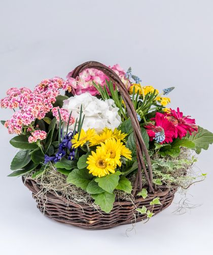 English Garden Basket A Beautiful Lush Collection Of Blooming Plants Filled In With Greens And Ivy In Our Natur Garden Basket Blooming Plants English Garden