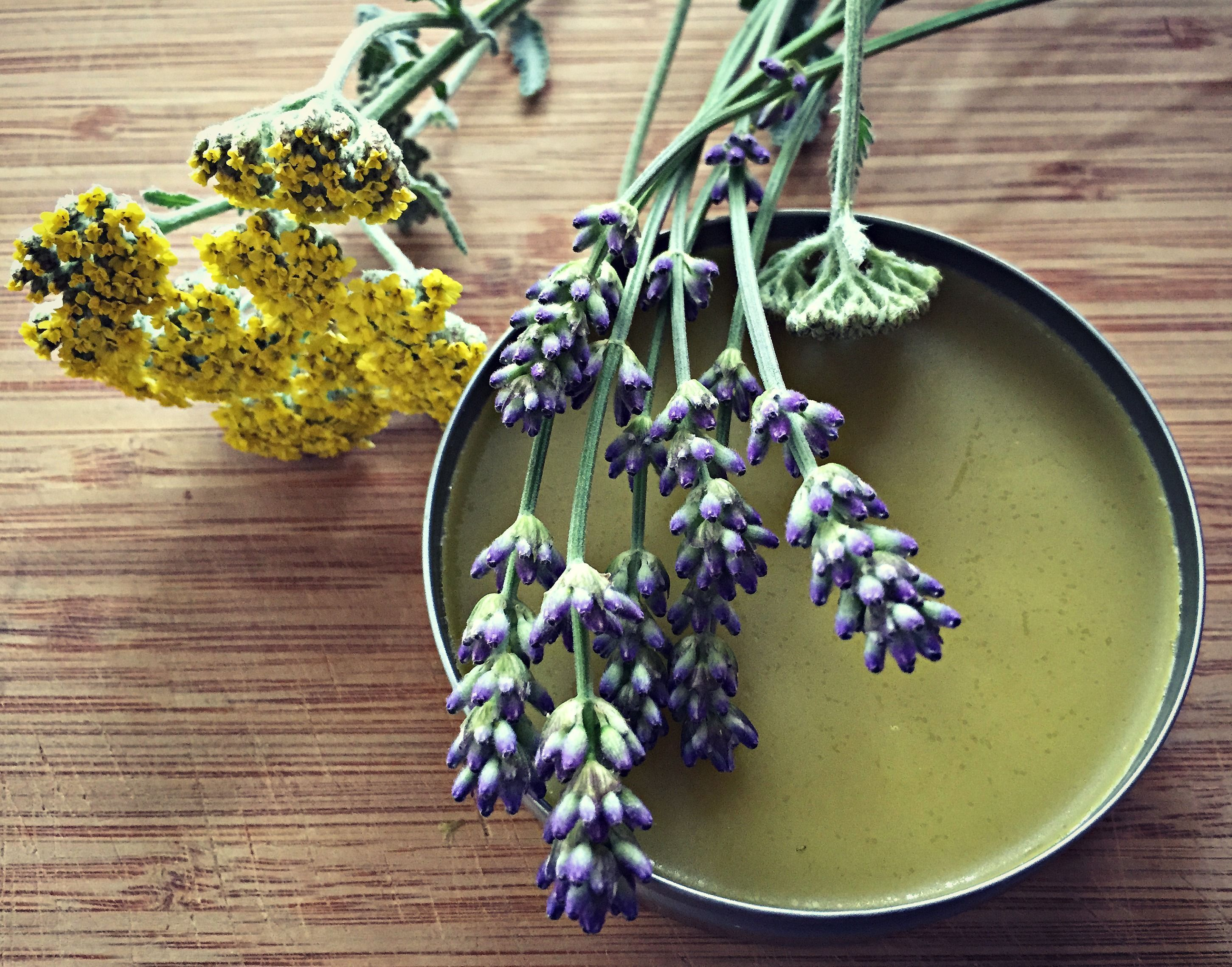 pictures How to Make Lavender Healing Salve