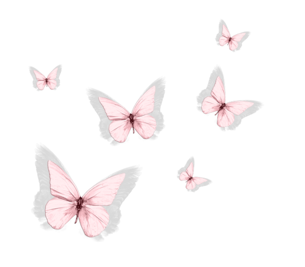 Papillons Page 73 Butterfly Wallpaper Iphone Butterfly Wallpaper Butterfly Art