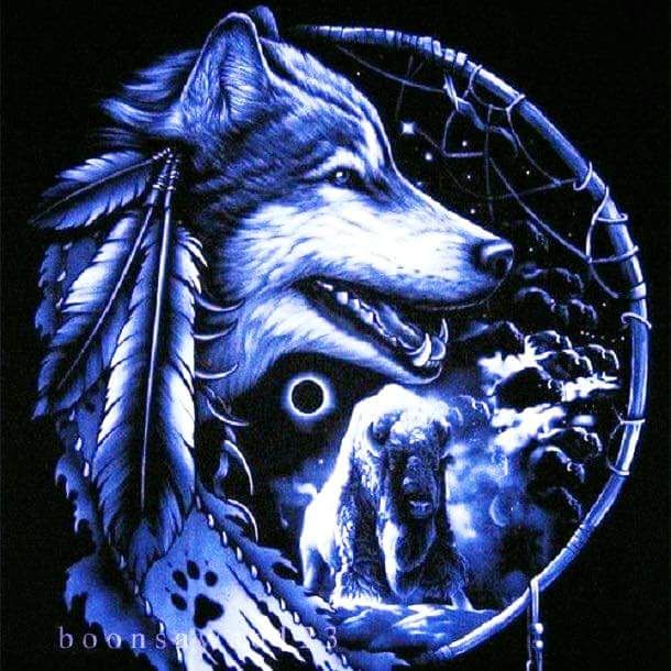 Pin By Trina Marshall On Dreamcatchers 1 With Images Wolf