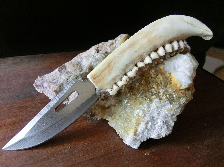 Deer Jaw bone, Stainless Steel Hunting Knife, Hand Tooled