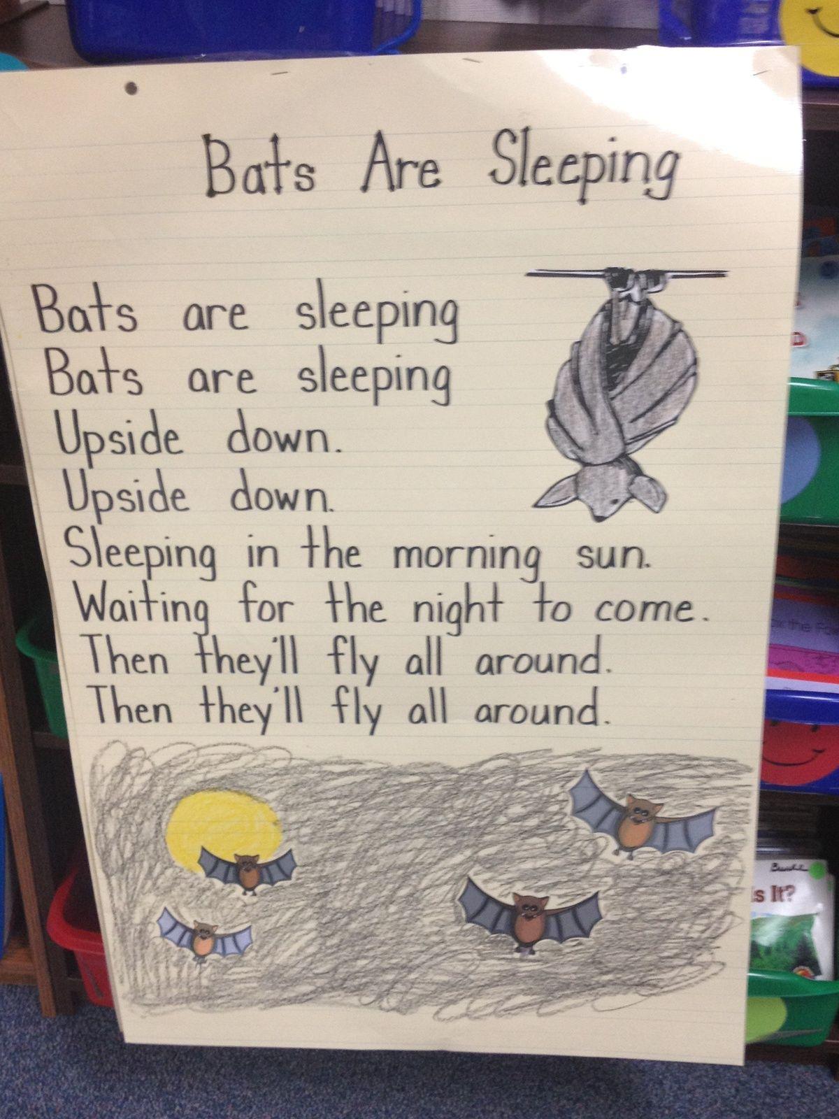 Pin By Suzanne Mason On Bats
