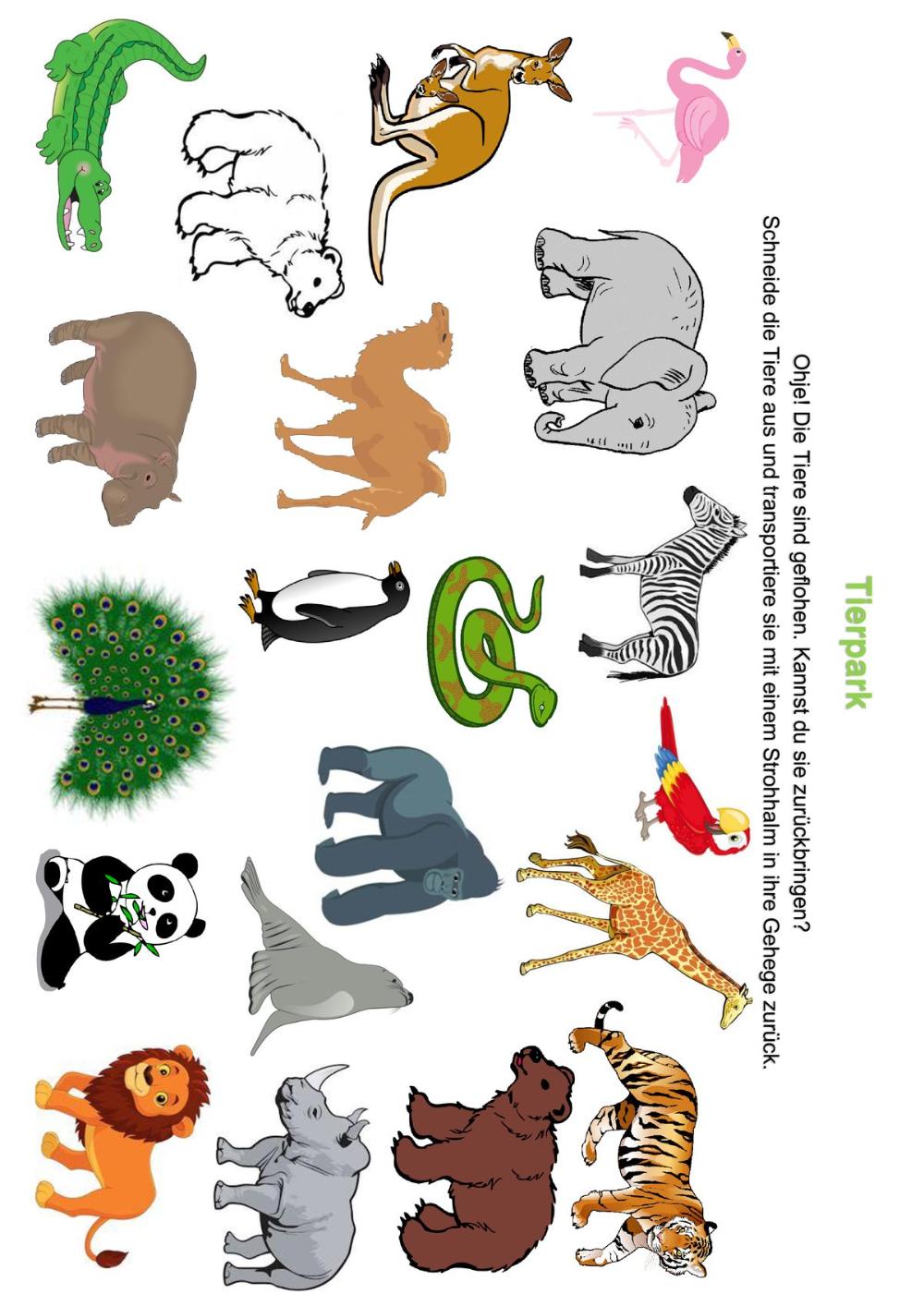 madoo pustespiel – Google Suche   Lernkarten für kinder ...