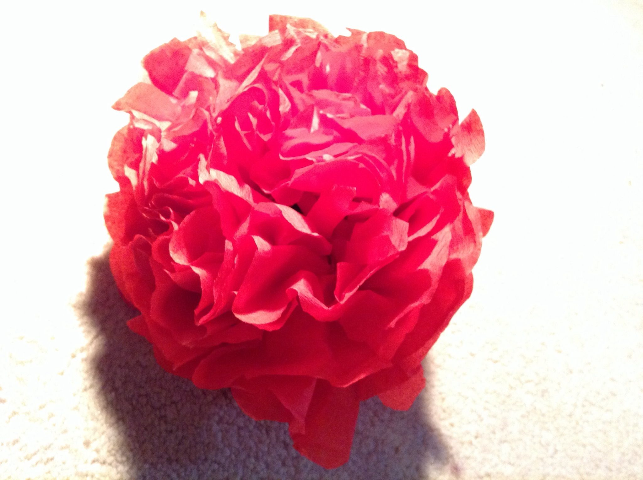 How to How to Make Tissue Paper Flowers  Recipe  Tissue paper