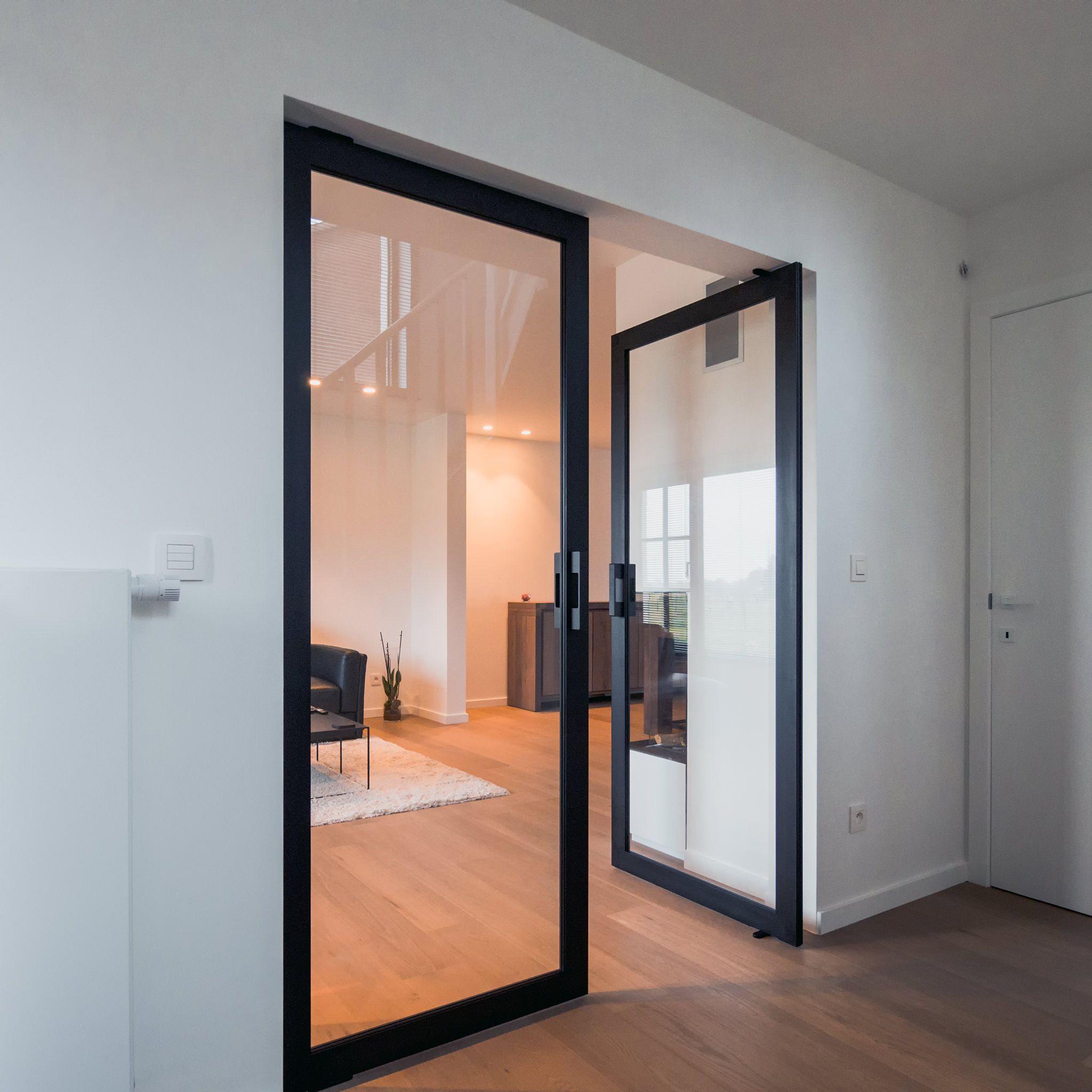 Attirant Double Glass Pivot Door With Black Anodised Aluminium Frame   Portapivot  6530 NL