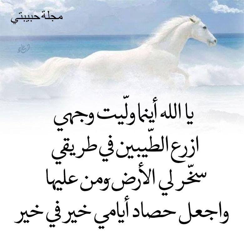 اللهم امين Citations Arabes Citation Doua