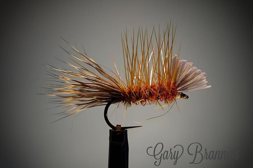 Rough Water Caddis - Gary Brannan